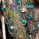 Хлороцибория сине-зелёная (Chlorociboria aeruginosa)