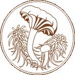 Сибирское Микологическое Общество